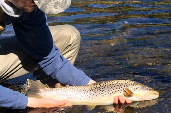 Liam Stephen Fly Fishing Guide